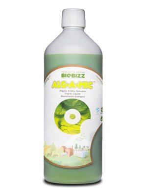 Alg-A-MicdiBio Bizz1L